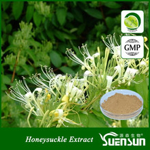 New products free sample lonicera japonica flower extract