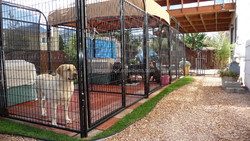 2015 new wholesale welded tube best heavy-duty dog run kennel