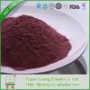 2015 Best-Selling kiwi fruit powder with good price