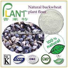Tartary buckwheat extract price