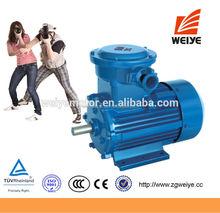 Industrial AC Voltage CE Certification EX Motors
