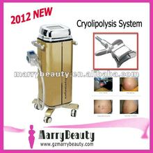 2012 new cryolipolisis equipment by fitness machine for sale