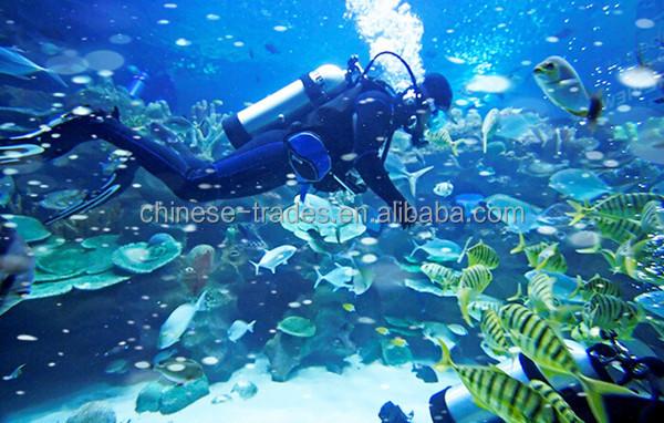 diving 2_.jpg