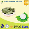 China Supplier Stevia Leaf Extract 40% ~ 99% Rebaudioside A
