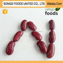 Shanxi High Quality Type of Red Kidney Beans