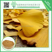 Ginkgo biloba powder extract Ginkgo Flavone Glycosides 24% steviol glycosides from honest suppliers