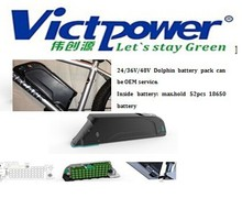 48V 18650 ebike li-ion battery pack with dolphin case 11.6Ah