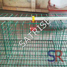 10,0000 birds scale Broiler Farming Equipment feed line