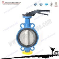 Manual/Pneumatic/Motorized Stainless steel Wafer DN150 butterfly valve