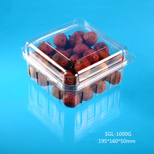 Manufacturer Custom PET Plastic Blister Fruit Packing Container Box