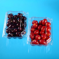 disposable transparent platsic clamshell hinged lid cherry tomato packaging container box
