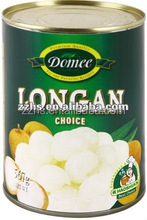Canned Longan Fruit