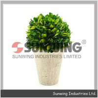 Preserved Pyramid Boxwood topiary artificial plant