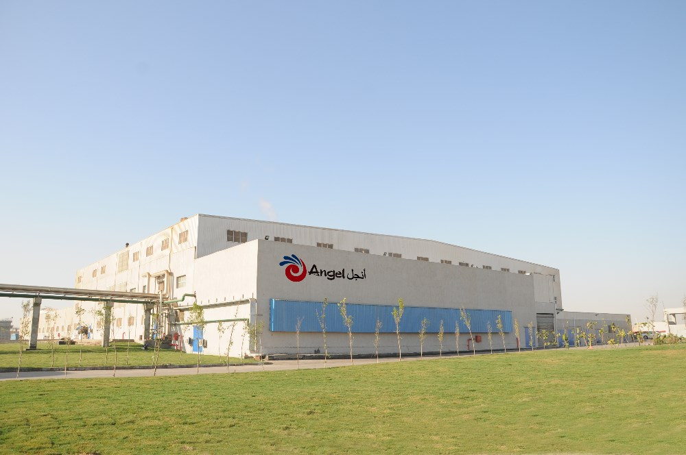The Angel Yeast factory in Egypt.jpg