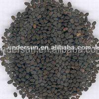 High quality Sexual enhancement Psoralea corylifolia extract
