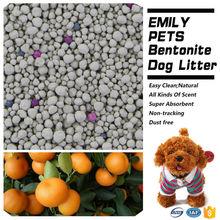 Pet Dog Accessories Toilet Product Bentonite Litter