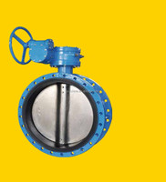 DN400 Casting Iron Concentric Double Flanged Butterfly Valve with Gear Box