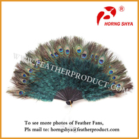 Craft Gift Peacock Feather Fan Supplies