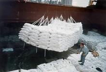 Thailand Beet Sugar Best Price