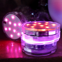 Romantic wedding design 10 LEDs multiple color changing light with remote