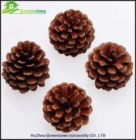 5CM Pine Cone Christmas Tree Ornament Hanging Decorations,Hot design Christmas jumbo pinecone GVCH65093