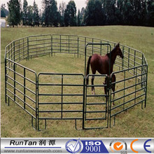 China high quality cheap horse round pens