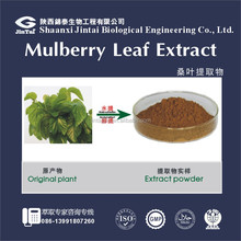 natural improving diabetes mellitus mulberry leaf extract