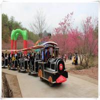 Professional Fwulong Tour Train Amusement Park Mini Tourist Train For Sale