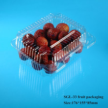 China supplier PET plastic blister food packaging container