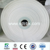 20X20 60GSM fiberglass plaster mesh enterprise