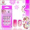 Nail Designed 3D Plastic Artificial Nails Tips/hot sale nail 3d design tip