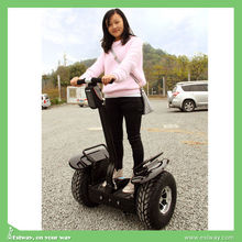Mini Self Balancing one wheel/two wheel electric scooter,electric mobility scooter