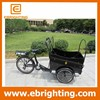 Hot selling three wheel electric cargo bike for adults made in China