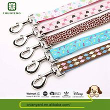 Top Quality Pets Accessories Exclusive Full Color Pitbull Dog Leash