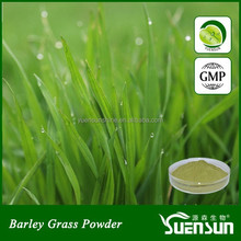 Remove pigmentation young barley grass powder