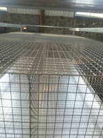 rabbit cage/hutch (factory)