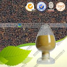 Plantago psyllium extract powder/TOP herbal extract manufacturer