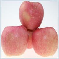 chinese apple fresh fruit supplier