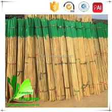 Plástico cana de bambu Mat