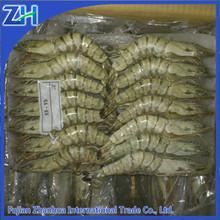 seafood shrimp importer& exporter- frozen black tiger shrimp wholesale price