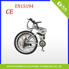 2 wheel electric bicycle chopper bike accessory