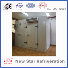 Insulated doors cold room with fire rated pu panel