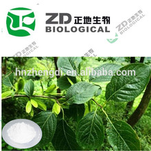 nome científico oliver eucommia ulmoides extrato de pó