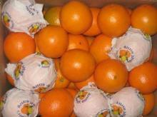 Fresh citrus fruits, fresh red fuji and golden delicious apples, valencia oranges and lemons