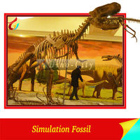 Real size dinosaur skeleton for the interactive entertainment