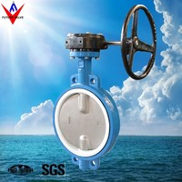 DN450 Double Stem Wafer Butterfly Valve With PTFE Seat