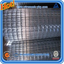304 steel or galvanized or pvc coated bird cage wire mesh welded wire mesh from Anping professional factory