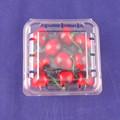 Disposabale PET plástico frutas embalaje