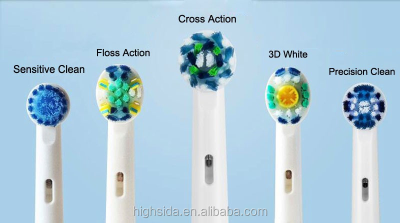 5 kinds model.jpg