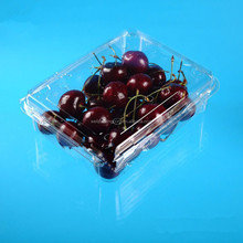 clear take away hinged lid packaging plastic food box container